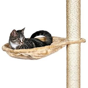 Kratzbaum für große Katzen